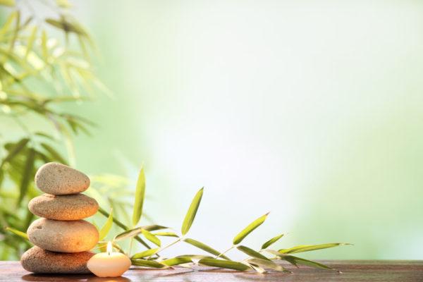 centre de relaxation, massage, spa, Mâcon
